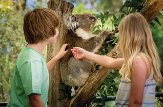 Kids and family activities in the Adelaide Hills