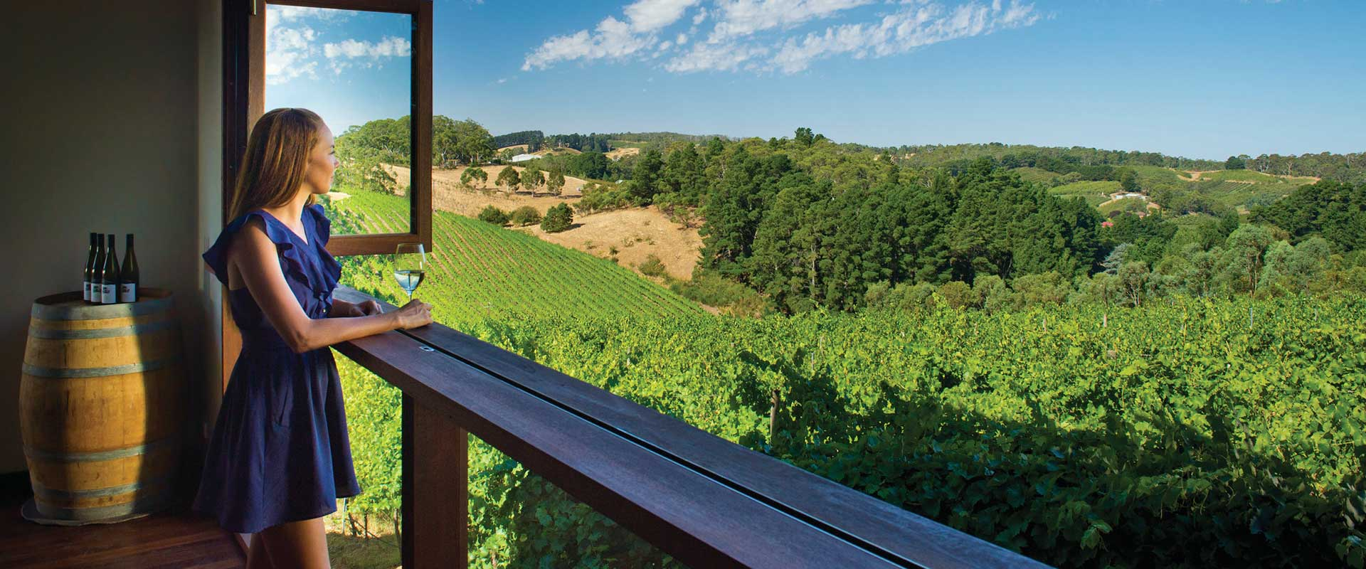 Mt Lofty Ranges Vineyard, Adelaide Hills