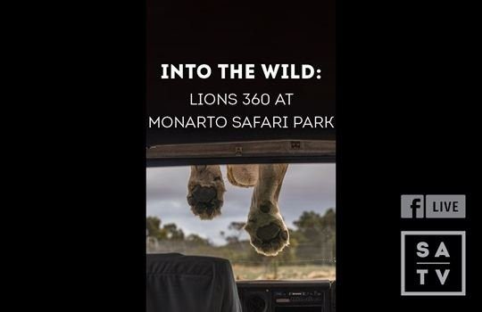 Facebook Live with Monarto Safari Park