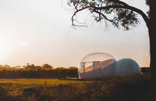 Bubble Tents, Coonawarra