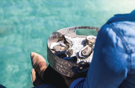 Pure-Coffin-Bay-Oysters