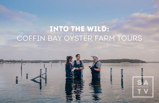 Facebook Live with Oyster Farm Tours