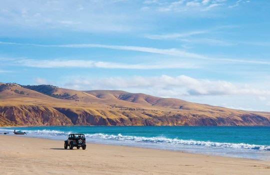 5 must visit Fleurieu Peninsula beaches