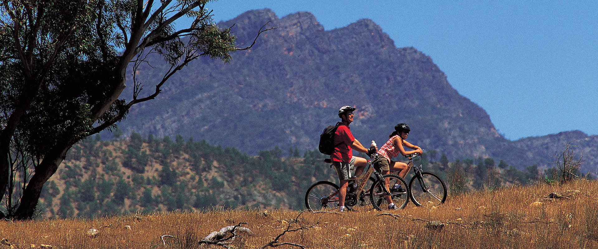 Cycling, Flinders Ranges